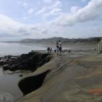 Muriwai Beach an der Tasman Sea