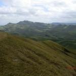 Neuseelands grüne Hügel