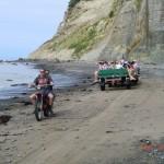 Verkehr zu den Tölpeln bei Ebbe