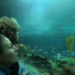 Beobachter im Meerestunnel