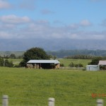 kleine Farmen am Wegesrand