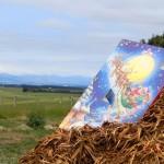 Kalenderausflug 2: Mulch mit Aussichten
