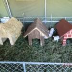 die drei kleinen Schweine mit Stroh-, Holz- und Backsteinhaus