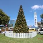 Weihnachtsbaum bei 30°C