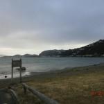 Strand gegenüber Wellington City
