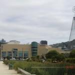 Te Papa Museum und der Lichterweihnachtsbaum