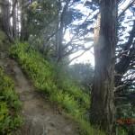 schmale Pfade, steile Hänge