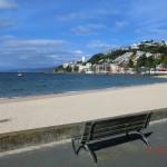 Oriental Bay Strand und Promenade