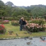 wir im Rosengarten Wellingtons