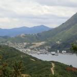 Picton mit Hafen vom Snout-Track aus