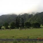 Wolken-Regen-Dunst im Vorbeifahren