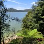 Aussichten vom Abel Tasman Nationalpark