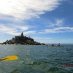 Pinnacle Island mit erster Seelöwen-Kolonie