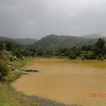 Lachsangeln (See dreckig wegen der Regenfälle, aber Lachse noch drin)