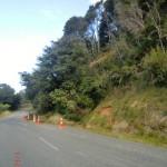 frischer Erdrutsch am Straßenrand auf dem Queen Charlotte Drive