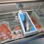 Mt. Cook's Salmon: frischer Lachs