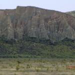 auf der Fahrt nach Zentralotago: Clay Cliffs zur Rechten
