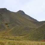 Lindis Pass Hügel mit interessanter Vegetation