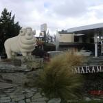 Omarama und das Schafsbock-Wahrzeichen