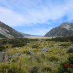 Lake Pukaki noch näher und Wanderung bald geschafft