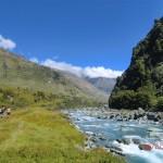 auf zum Rob Roy Gletscher, entlang reißender Ströme über grüne Wiesen zu Beginn