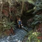 Tini in kleiner Waldbucht