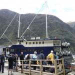 Doubtful Sound Overnight: am Anleger unseres Segelbootes - Die Reise beginnt!