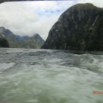 Doubtful Sound Overnight: aus dem Fensterchen am Bett