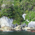Doubtful Sound Overnight: entlang Felsufer