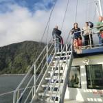 Doubtful Sound Overnight: schauen, genießen, entspannen
