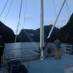 Doubtful Sound Overnight: Nature-Guide und Birgen auf Delfinbeobachtung
