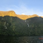 Doubtful Sound Overnight: Regenwald-Wände