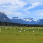 auf der Fahrt von Te Anau zum Milford Sound