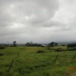 so anders: Weiden und Strände im Süden