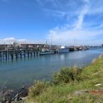 Bluffs Hafen