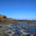 Curio Bay: tolles Gestein und näher am Pingu