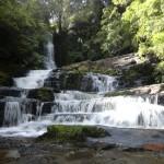 noch einmal, weil sie so schön sind: McLean Falls
