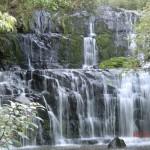 Purakaunui Falls - das Postkarten-Kalender-Motiv