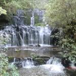 Purakaunui Falls - das Postkarten-Kalender-Motiv II
