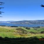 auf der Otago Halbinsel hinter Dunedin
