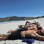 noch mehr faule Seelöwen am Allans Beach