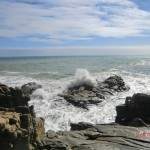 Flut, Blowholes, Gischt, Klippen - West Coast NZ