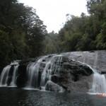 Wanderung mit Angie: Coal Creek Falls