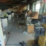Christchurch nach dem Februar-Beben: durchs Schaufenster einer Apotheke
