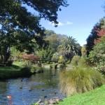 Christchurch nach dem Februar-Beben: Hagley Park, fast wie damals