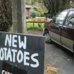Obst und Gemüse kaufen am Selbstbedienungsstraßenstand