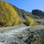 im Flusstal