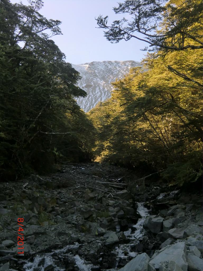 in den Bergen bei Lyford