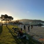Oriental Bay an einem goldenen Spätnachmittag