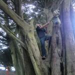 typisch neuseeländischer Kletterwolf :-)